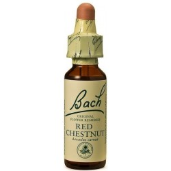 POWER BACH RED CHESTNUT No25 20ML