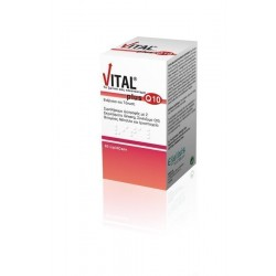 VITAL PLUS Q10 LIPID 60CAP